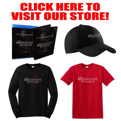 VisitStore